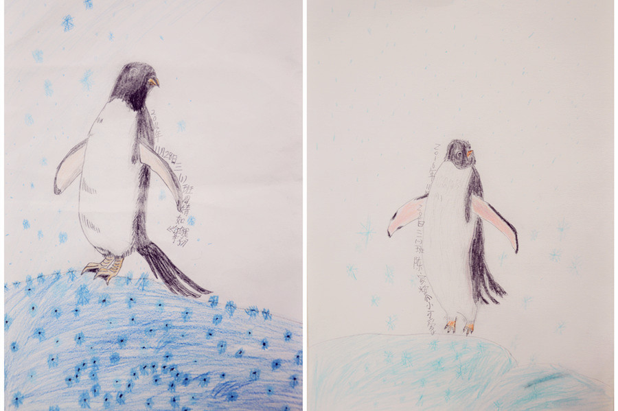 铅笔画社的孩子们将通过今天的活动,和老师一起会见南极的可爱小精灵&